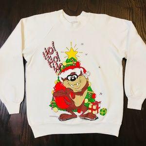 Vintage Warner Bros Sweatshirt 1994 Taz Devil M
